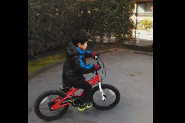 pic-bike-600x400 子供の自転車練習 / 力強く乗れるようになるための5ステップ