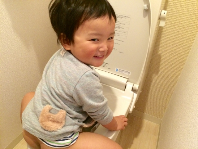 toilet-training トイレトレーニングはカンタン!と思ったが末っ子(2歳児)に同じ手は通じなかった。