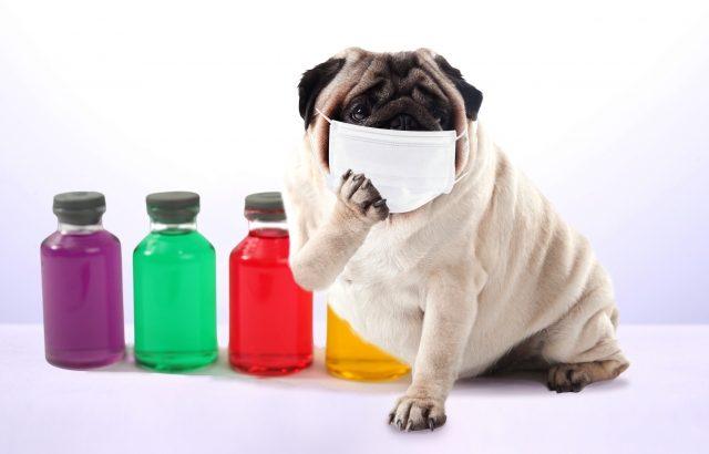 インフルエンザ予防したはずなのに・・。ワクチンではダメな場合の対策はコレだ!