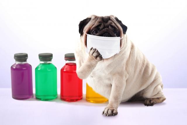 pag インフルエンザ予防したはずなのに・・。ワクチンではダメな場合の対策はコレだ!